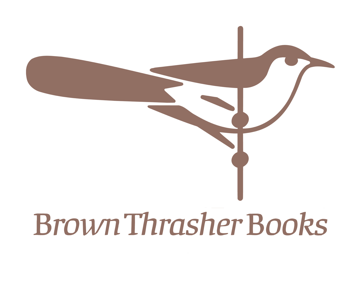 Brown thrasher incolor