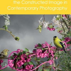 Associate Professor Marni Shindelman has edited a recently released publication, The Focal Press Companion to the Constructed Image in Contemporary Photography.