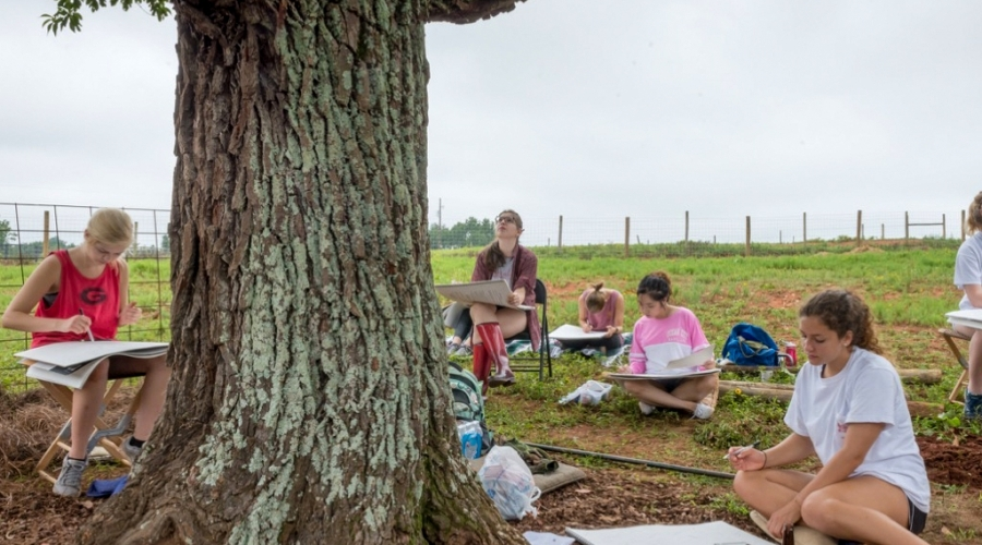 Students sit around a tree and draw