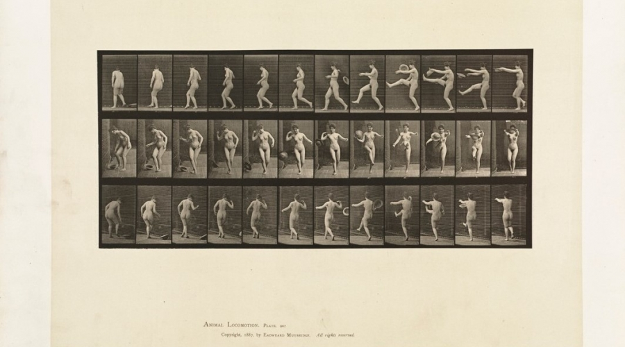 "Edweard Muybridge, Woman Kicking a Hat, plate 367, collotype , in his ""Animal Locomotion"" (published 1887)"